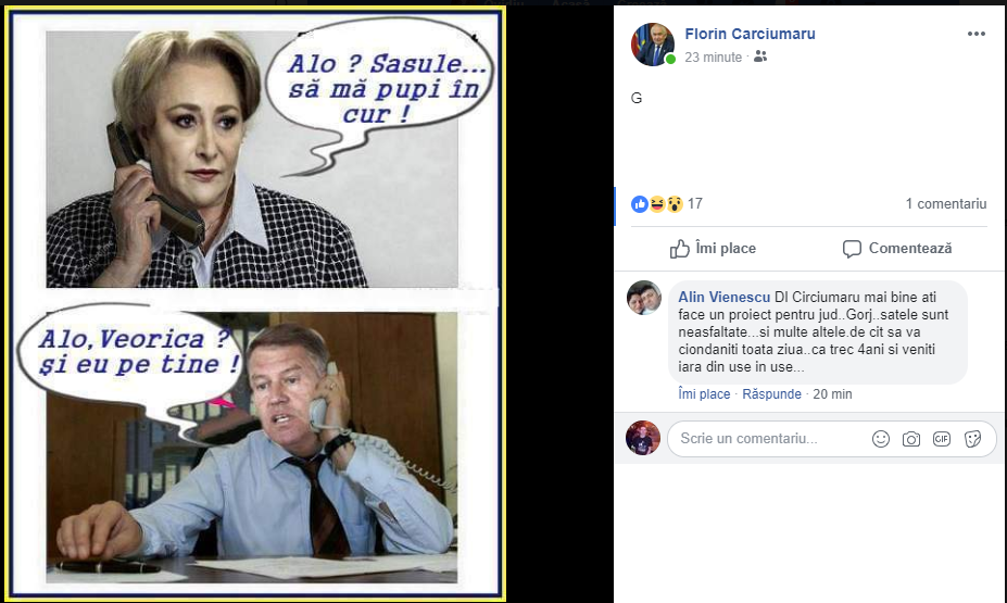 Activitatea domnului senator Florin Cârciumaru