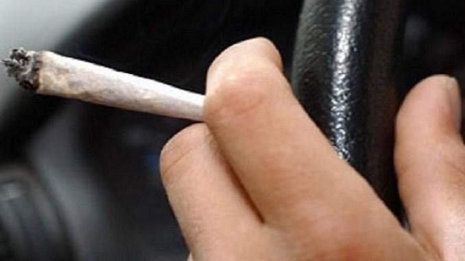 soferi drogati la volan